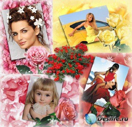 Рамки для Photoshop - Лепестки роз