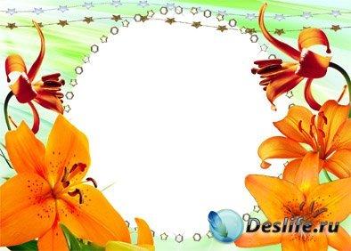 Цветочная фантазия - Рамочка для Фотошопа