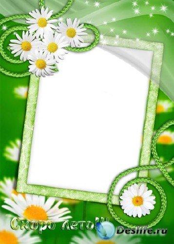 Рамка для фотошоп – Ромашки