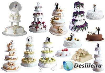 Клипарт - Торты свадебные в PNG