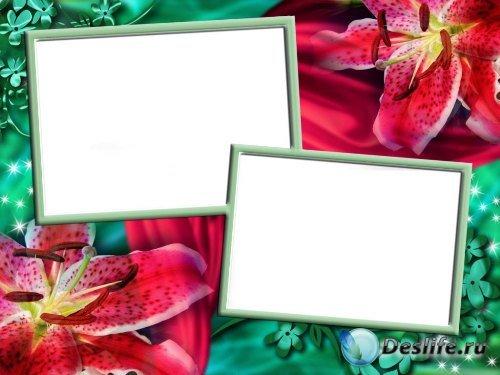 Рамка для фотошоп – Два фото с лилиями