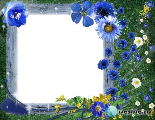 Рамочка для Фотошопа - Василки