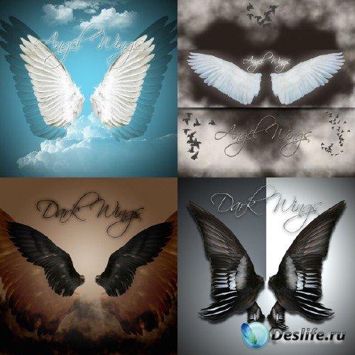 Angel and Dark Wings - Крылья в PSD