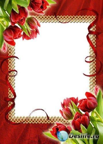 Рамка для фотошоп – Тюльпаны любимые