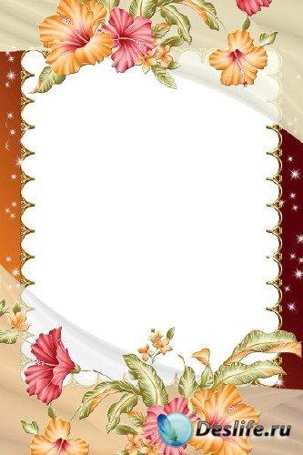 Рамка для фотошоп – Суданская роза