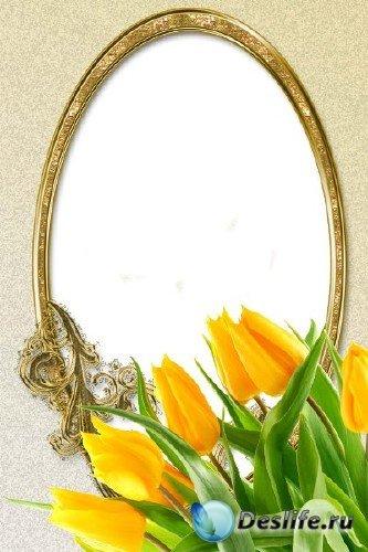 Рамка для фотошоп – Желтые тюльпаны