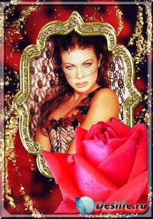 Фоторамка - Королевская роза