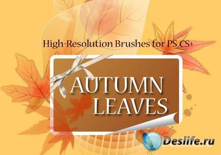 Кисти для фотошопа - Осенние листья (Autumn Leaves Brushes)