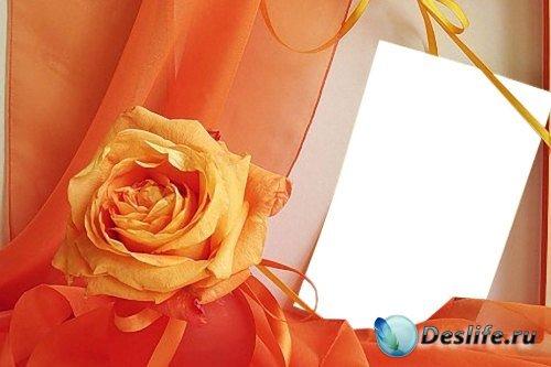 Рамка для фотошоп – Оранжевые ленты