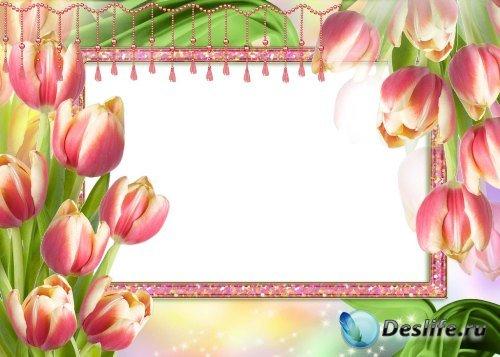 Рамка для фотошоп – Букет из тюльпанов