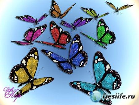 Клипарт для Фотошопа - Бабочки