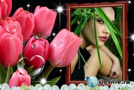 Рамка для Фотошопа - Тюльпаны для любимой