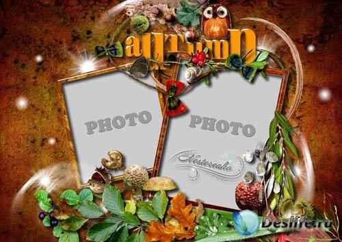 Рамка для Фотошопа - Осенние фантазии_2