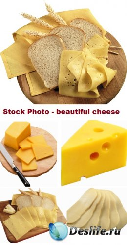 Stock Photo - Beautiful cheese