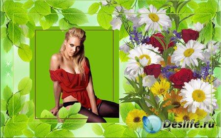 Рамка для Фотошопа - Цветы полевые
