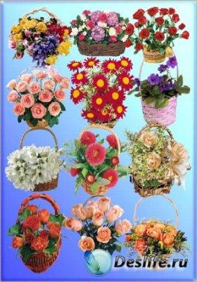 Клипарт - Корзинки с цветами