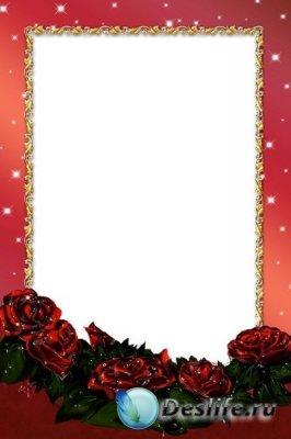 Рамка для фотошоп – Роса на розах
