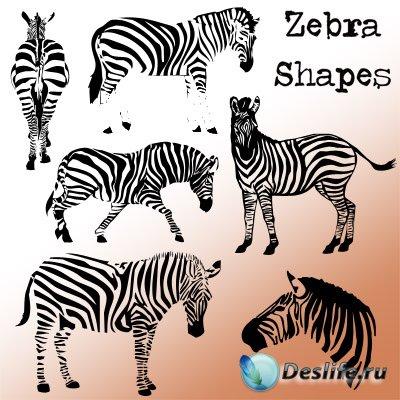Фигуры для фотошопа - Зебры