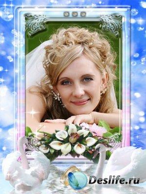 Рамка для Фотошопа - Свадебные лебеди