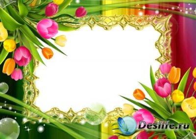 Рамка для фотошоп – Краски весны