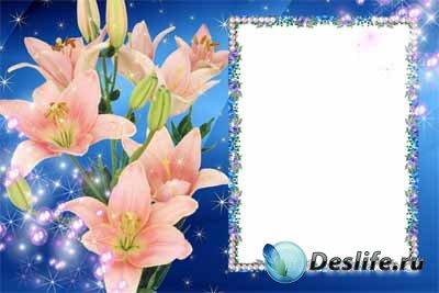Рамка для фотошопа - Синяя с лилиями