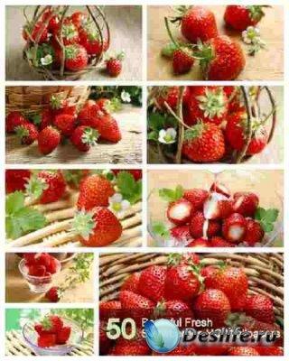 50 Beuteful Fresh Strawberries HQ Wallpapers