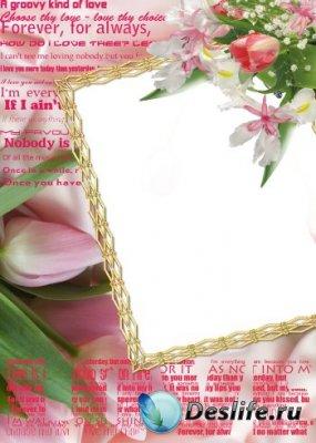 Рамка для фотошопа – Тюльпаны