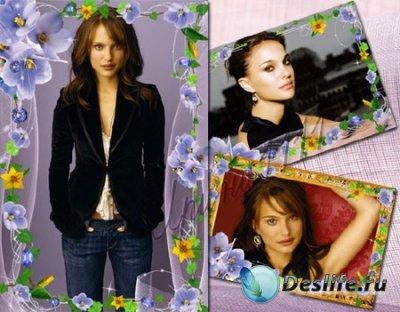Рамки для фотошопа - Голубые цветы
