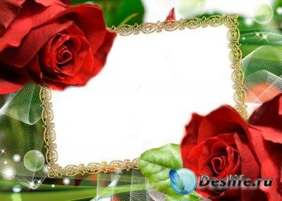 Рамка для фотошопа – Две розы