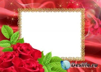 Рамка для фотошопа – Очаровательные розы