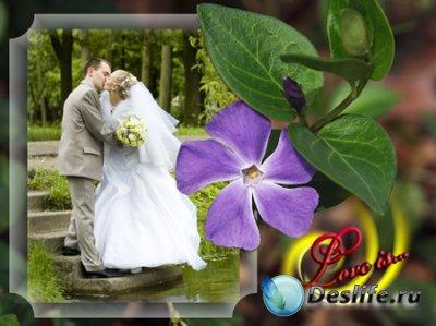 Рамка для фотошопа - Love is...