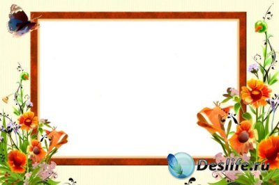 Рамка для фотошопа – Полевые цветы