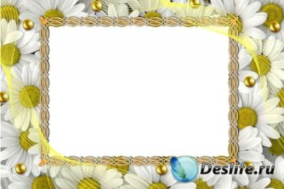 Рамка для фотошопа – Ромашки