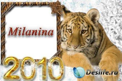 Рамка для фотошопа – С тигром