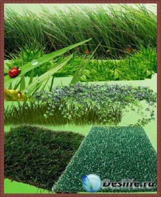 Клипарт для фотошопа - Трава и Газоны в растре