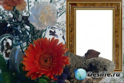 Рамка для фотошопа - Натюрморт