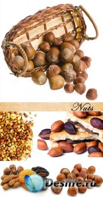 Stock Photo: Nuts