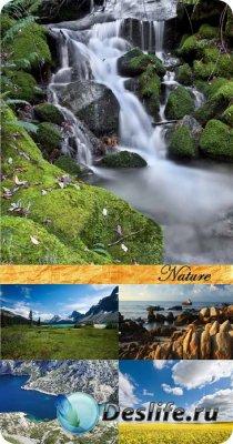 Stock Photo: Nature