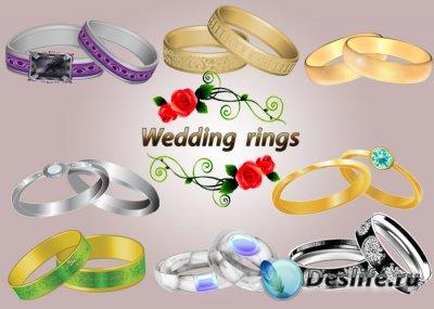 Векторный клипарт для фотошопа - Обручальные кольца (Wedding rings)