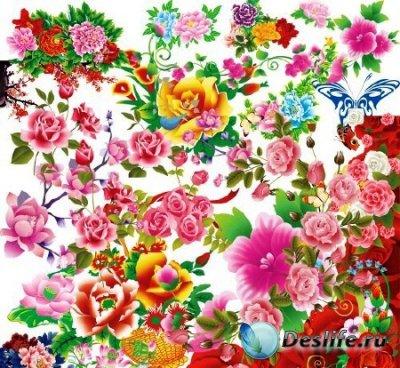 PSD клипарт для фотошопа - Цветочная коллекция