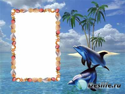 Морская рамочка для фотошопа с дельфинами