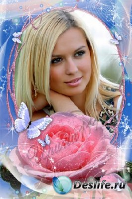 Рамка для фотошопа - Розовая роза