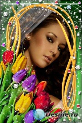 Рамка для фотошопа - Прекрасные цветы