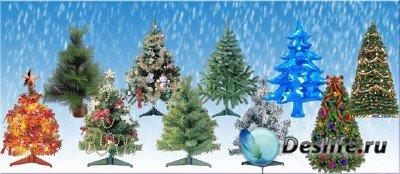 PNG клипарт для фотошопа - Ёлки Новогодние