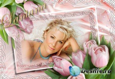 Рамка для фотошопа - Розовый шелк