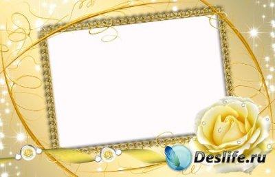 Рамка для фотошопа – Утренняя роза