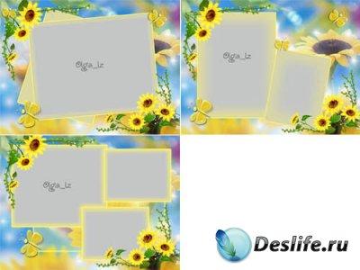Рамки для фотошопа с подсолнухами