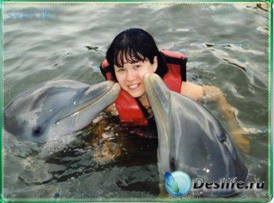 Костюм для фотошопа - Поцелуй дельфина