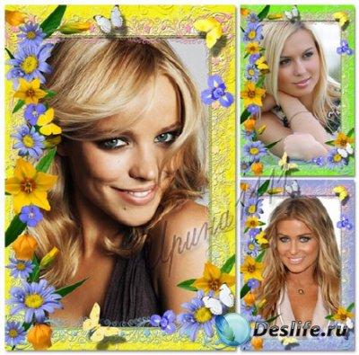 Рамки для фотошопа - Летние цветы