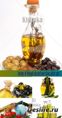 Stock Photo: Variety of infused oils and olives plant. Part 2